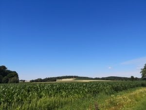 Wohnen in Düdinghausen.